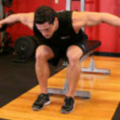 Seated Bent Oved Rear Delt Raise