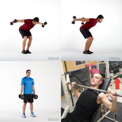 Full body Weights