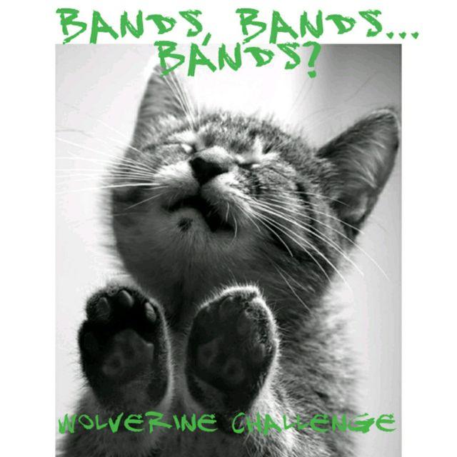 Bands, Bands... Bands? ✴️ July Wolverine Challenge ✳️ Pat