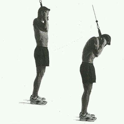 15 - 20  Rope Crunches  (Left Right Straight, Kneeling Or Standing)