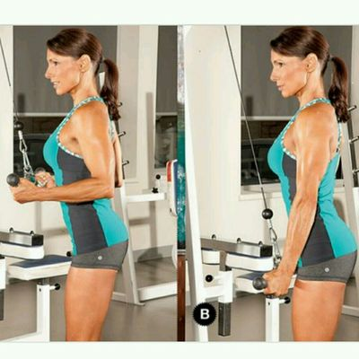 CABLE Reverse Grip Tricep Extension