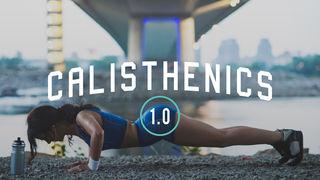 Calisthenics 1.0