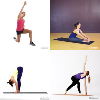 Warmup & Stretch