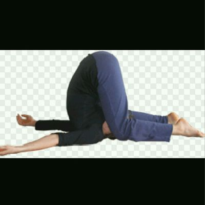 Plow Knee To Ear Pose (SNAIL)