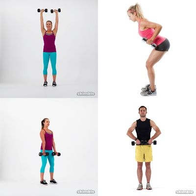 arms weights