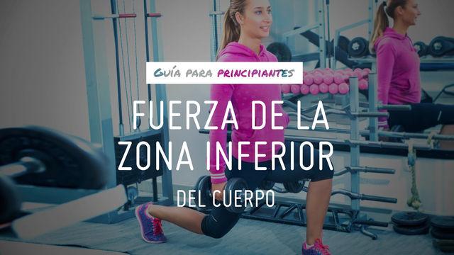 Guía para principiantes: Fuerza de la zona inferior del cuerpo