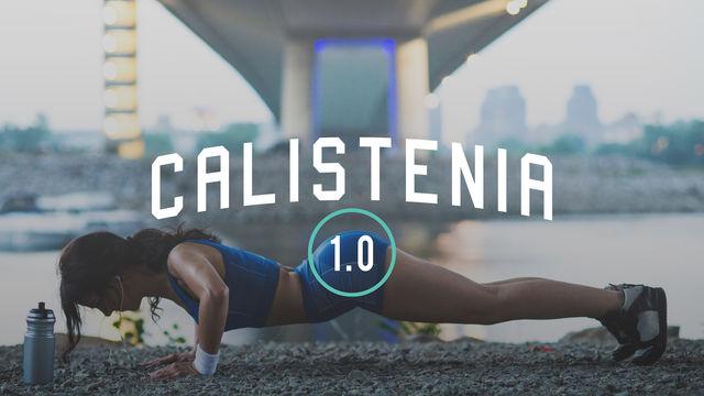 Calistenia 1.0