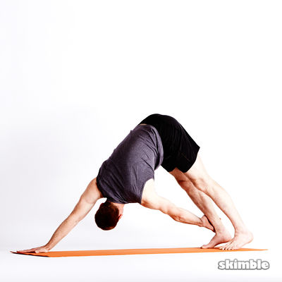 Twisting Downward Dog