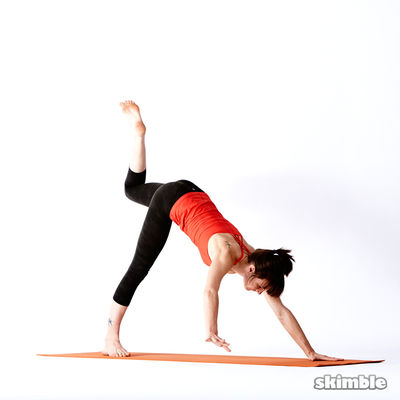 Twisting Downward Dog with Left Leg Raise