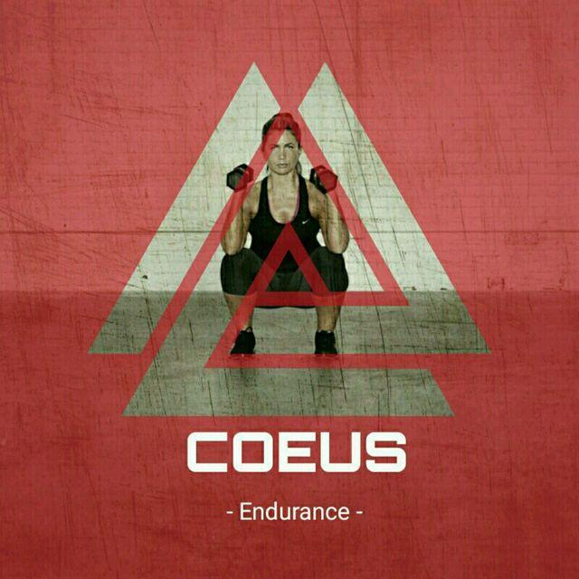 COEUS Endurance