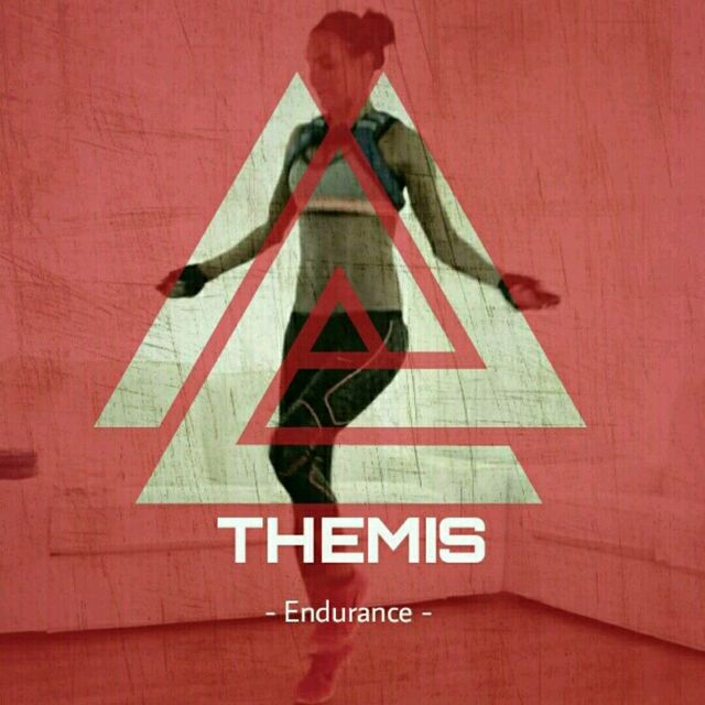 THEMIS Endurance