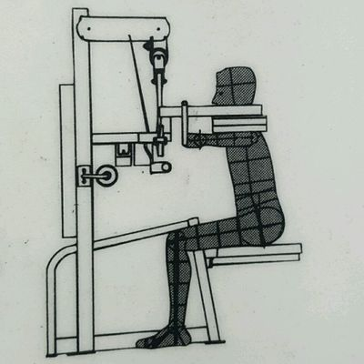 Shoulders - Lateral Raise - Cybex