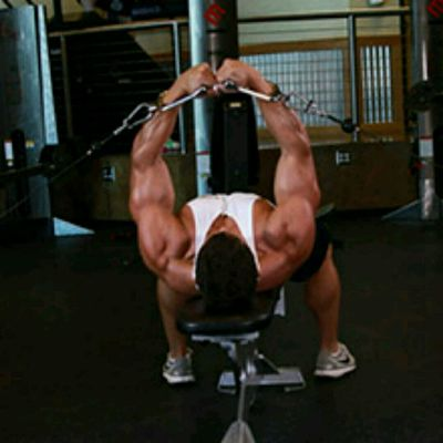 FLAT BENCH CABLE Flyes