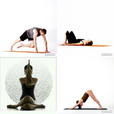 All kinds of yoga