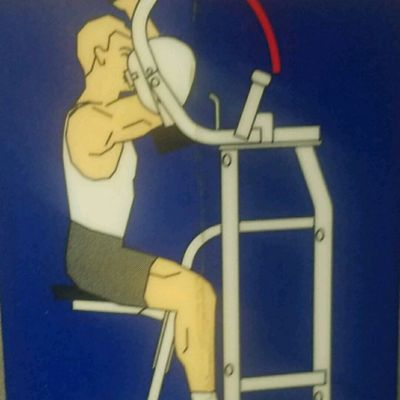 Biceps - MTS Biceps Curl - Hammer Strength