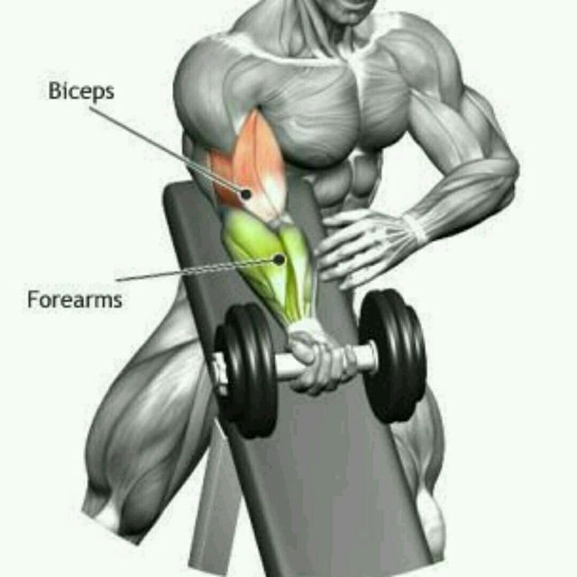 How to do: Bicep Crash - Step 1