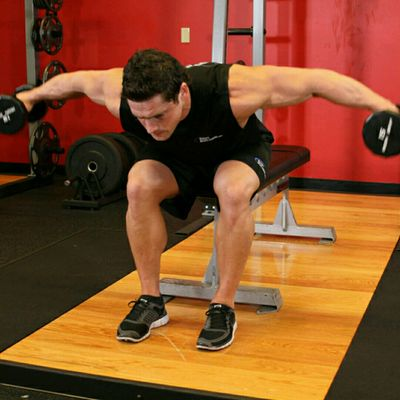 Seated Dumbbell Bend Over Lateral Raise