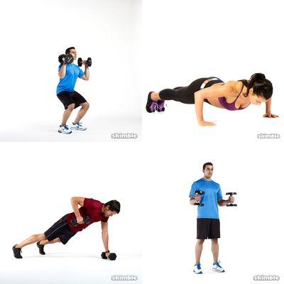 bíceps e tríceps