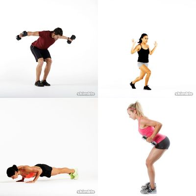 Shoulders/Arms Workouts