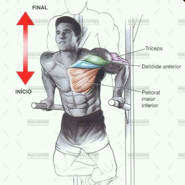 How to do: TRICEPS MAQUINA - Step 1