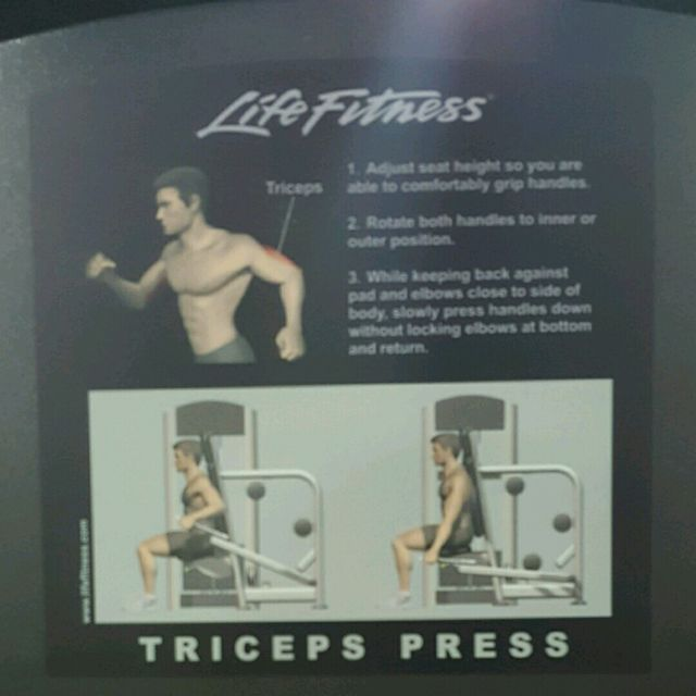 How to do: Triceps Press - Step 2