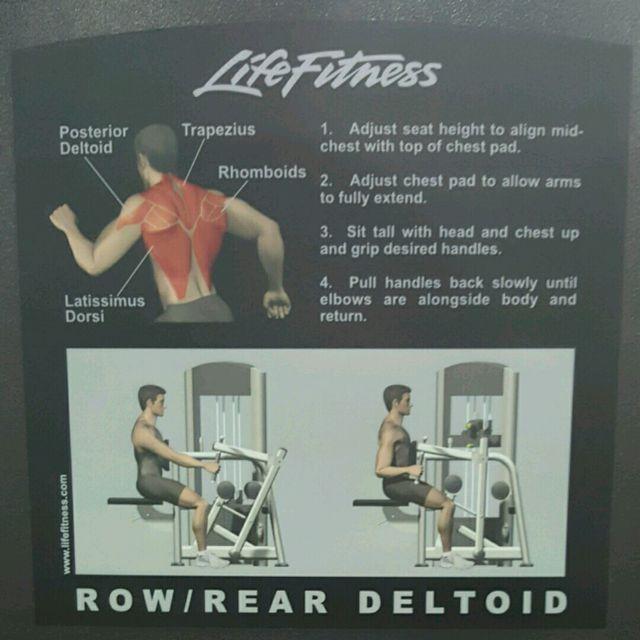 How to do: Row/Rear Deltoid - Step 2