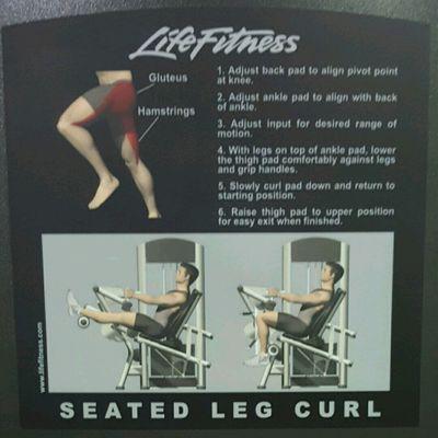 Gym Buff (Legs)