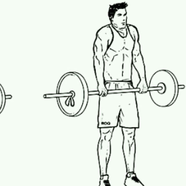 How to do: Barbell Shoulder Shrug - Step 2