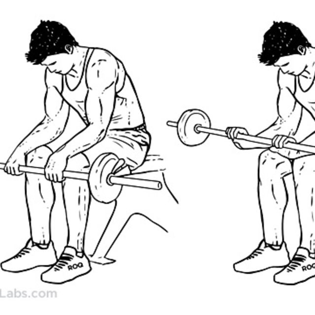 How to do: Reverse Wrist Curls - Step 1