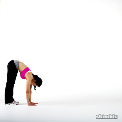 Arms & Shoulders & Butt & Legs