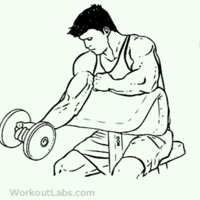 How to do: Single Arm Dumbbell Preacher Curl - Step 1