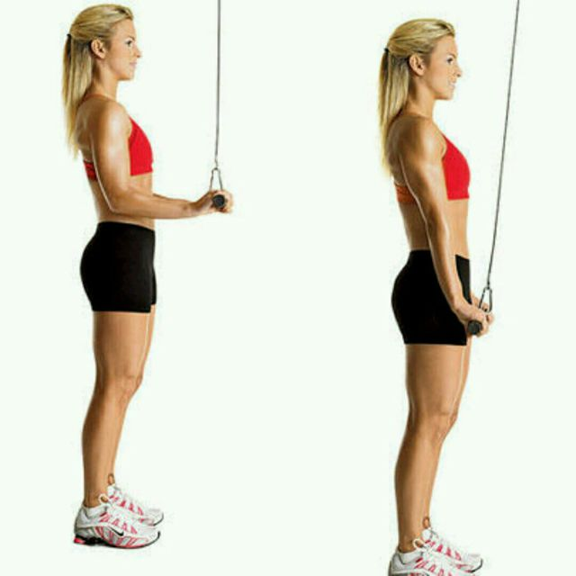 How to do: Tricep Cable Pushdown - Step 1