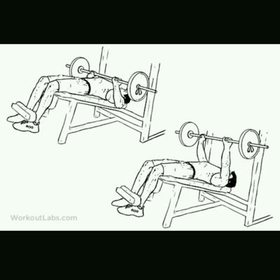 Barbell Decline Press