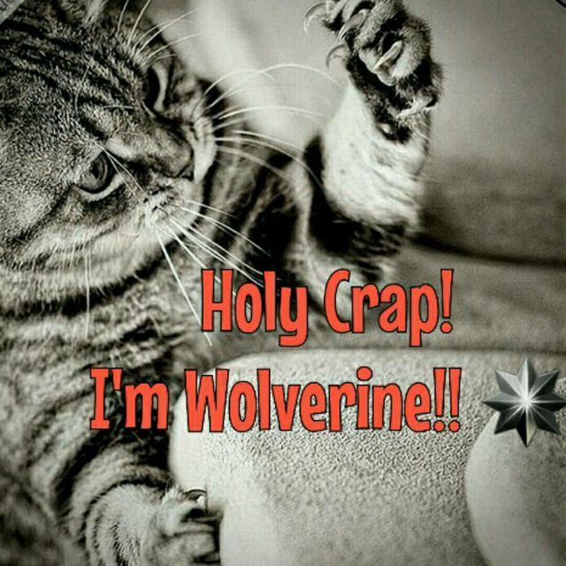 👊💥⭐UNLEASH YOUR INNER BEAST💥👊Team Wolverine January Challenge ⭐HS