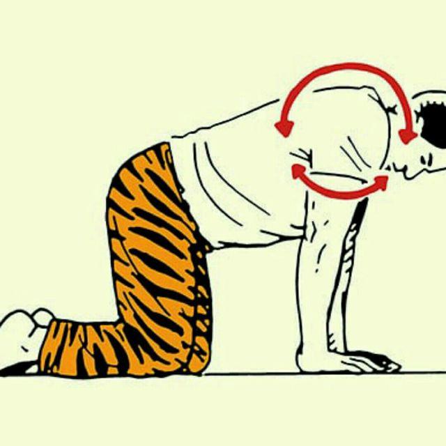 How to do: Shoulder Rolls - Step 1