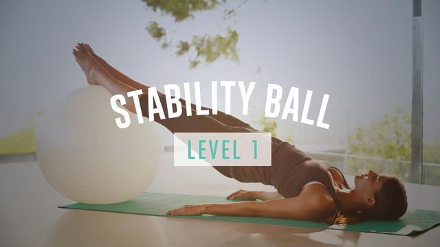 Stability Ball Level I