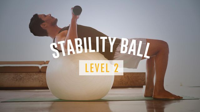 Stability Ball Level II