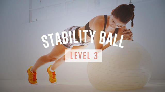 Stability Ball Level III