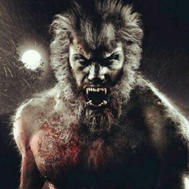 Kicker Beasts ☆AS **Team Wolverine Unleash Your Inner Beast Challenge**