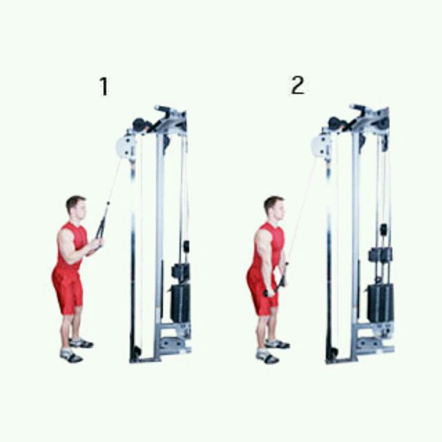 How to do: Triceps Pushdown - Step 1