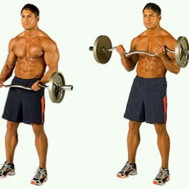 How to do: Biceps Curl EZ Bar - Step 1