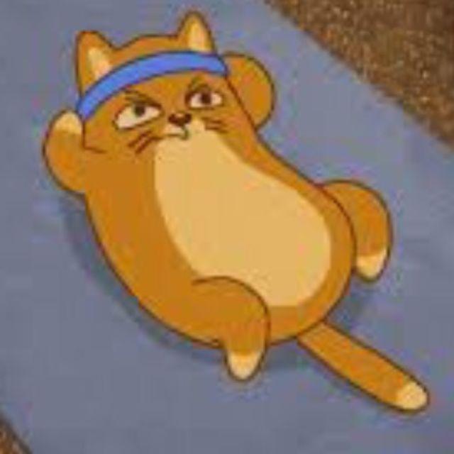 Meow-velous Abs