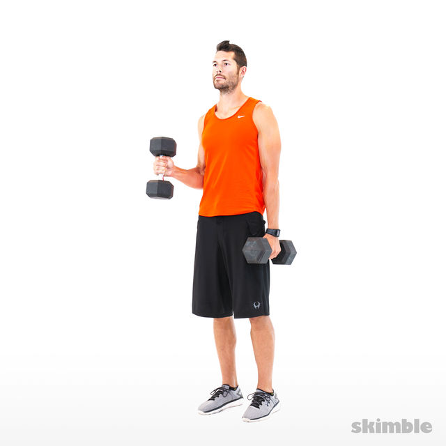 How to do: Alternating Hammer Curls - Step 9