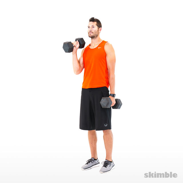 How to do: Alternating Hammer Curls - Step 8