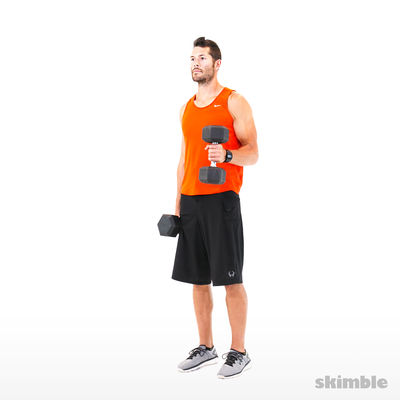 Alternating Hammer Curls
