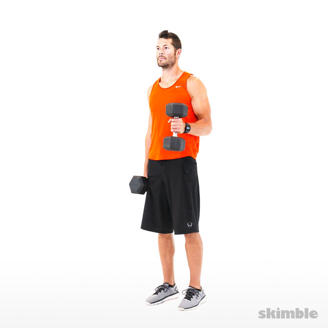 How to do: Alternating Hammer Curls - Step 2
