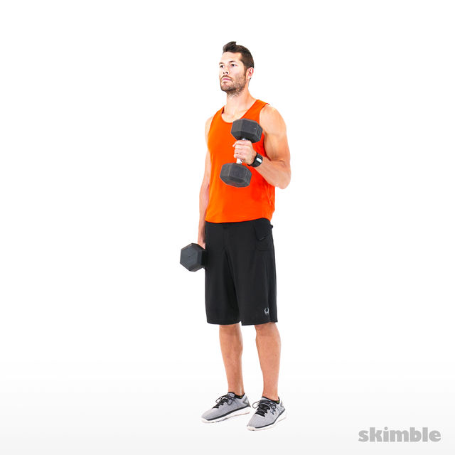 How to do: Alternating Hammer Curls - Step 3