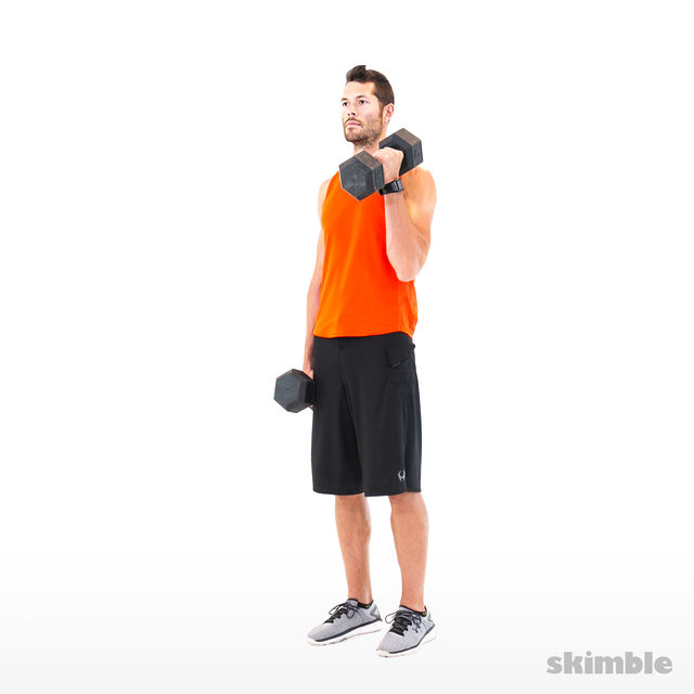 How to do: Alternating Hammer Curls - Step 4