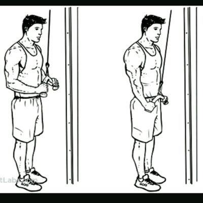 triceps cable push down