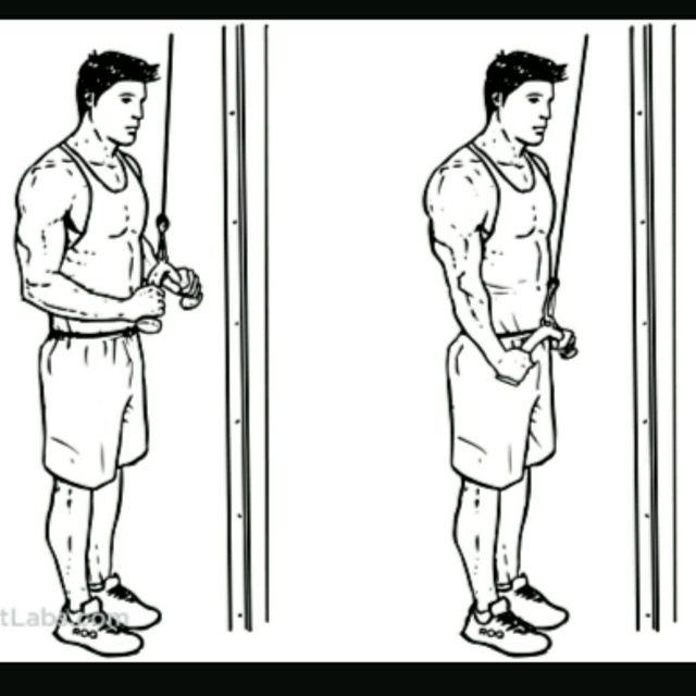 How to do: triceps cable push down - Step 1